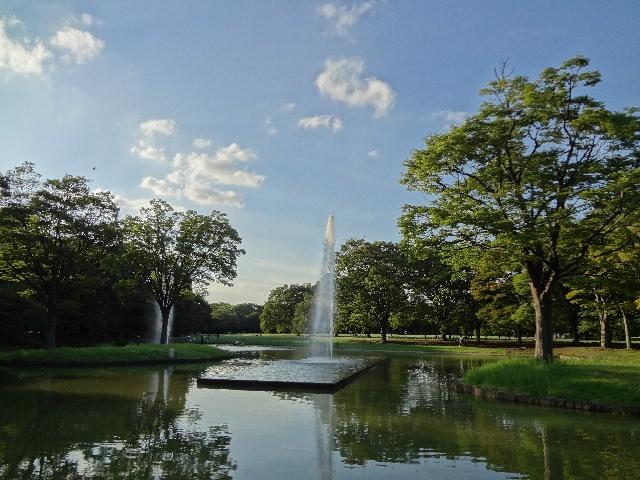 2. 遠離都市的喧囂,一座充滿大自然的公園「代代木公園」