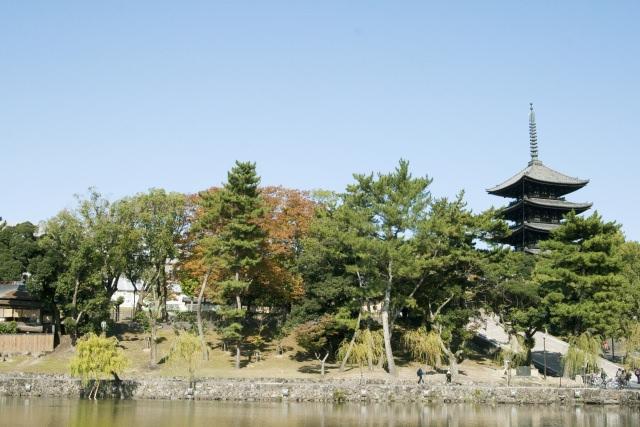 7. 到秋天的東大寺賞楓葉吧!