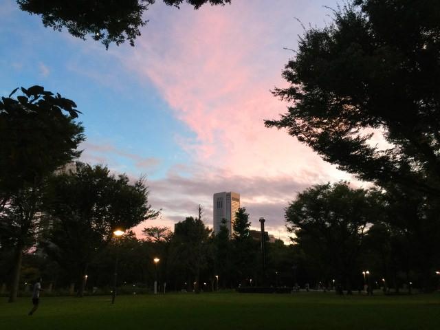 2. 新宿總鎮守熊野神社在內的「新宿中央公園」