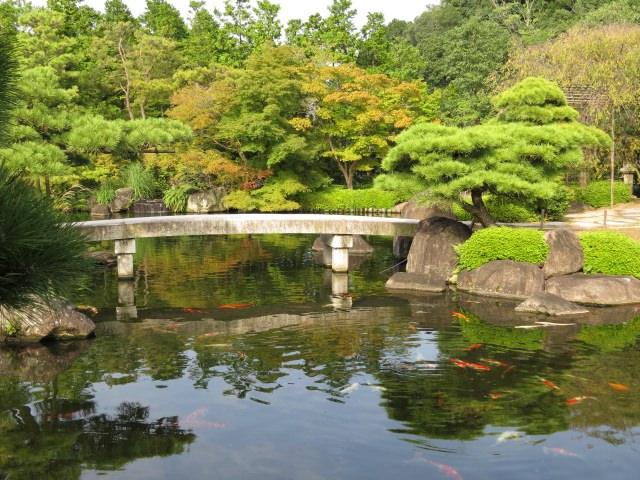 3. 感受廣大土地中日本庭園的樂趣「好古園」