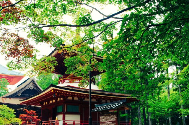 4. 和歌山縣能感受大自然的觀光地就是此!「高野山」