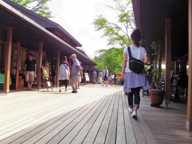 6. 能感受輕井澤日常的觀光景點「樹街小鎮」