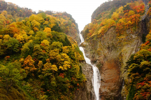 9. 日本必訪瀑布之一,富山絕景「稱名瀑布」