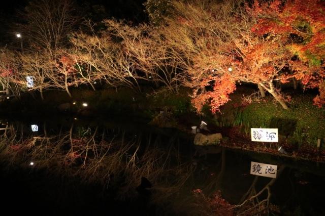 6. 能享受羅曼蒂克風景的賞楓景點「名花之里」
