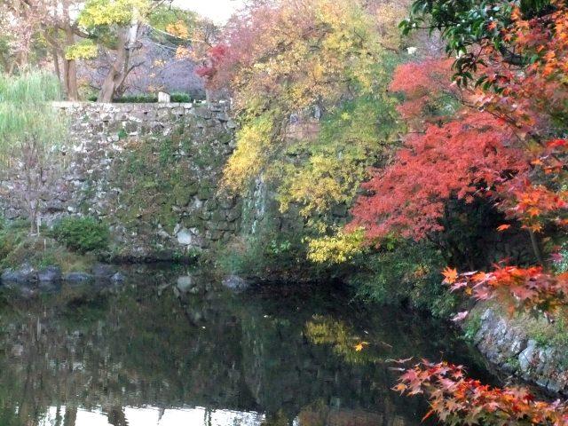 7. 位於和歌山縣中心部的地標。紅葉更是絕景「和歌山城 紅葉溪庭園」