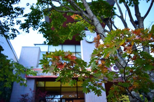 10. 印象中的別墅就是這裡!以前因外國人而熱鬧起來的「舊輕井澤」
