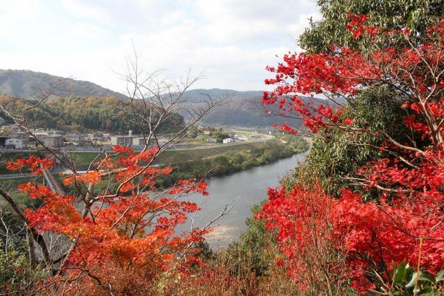 4. 鮮豔紅與橘非常美麗「尾關山公園」
