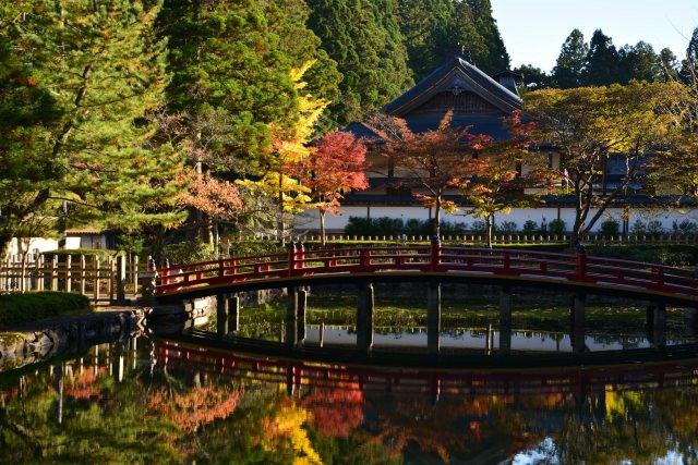 1. 和歌山的觀光勝地!紅葉一定不可錯過!「高野山」