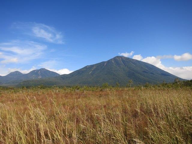 10. 從東京能到達的,栃木縣遼闊的自然景觀「戰場之原」
