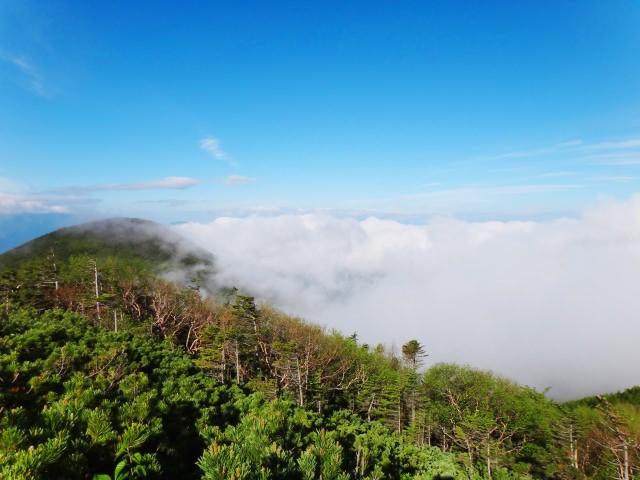6. 能盡情感受山梨自然的基本觀光景點!「八岳 清里自然觀察園」