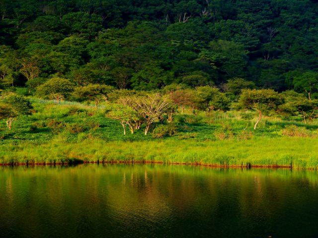 2. 日本100名山之一!可以享受登山樂趣的群馬縣觀光名地!「赤城山」