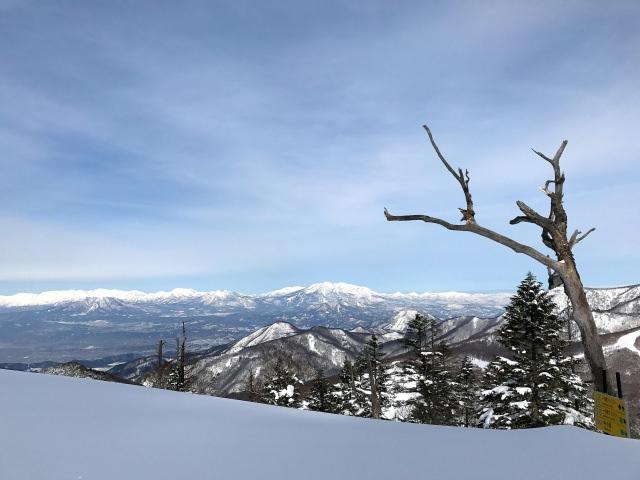 2. 多彩多姿的行程為魅力!「志賀高原滑雪場」