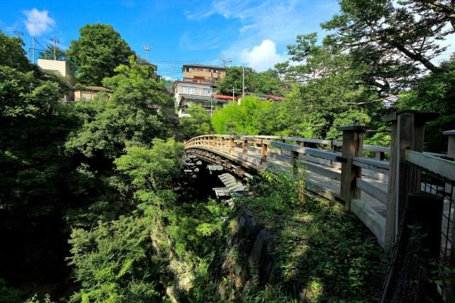 8. 能感受日本四季的日本三奇橋之一!「猿橋」
