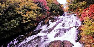 【日本・日光自由行】必去的10大推薦旅遊景點全攻略!
