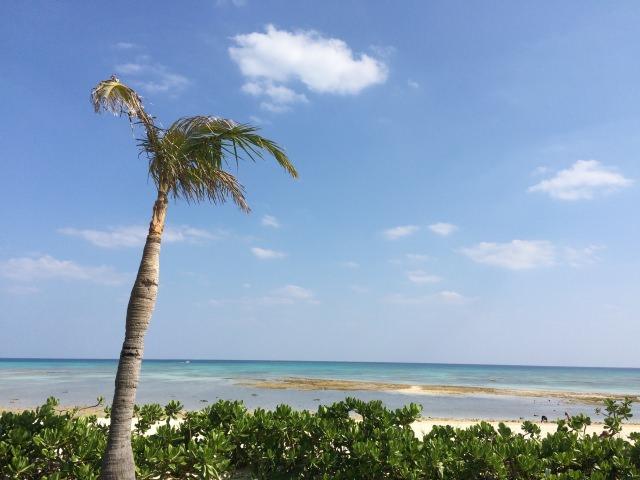 8. 在美麗的沙灘上渡過美好的一天!久米島中特別推薦的「Eef Beach」