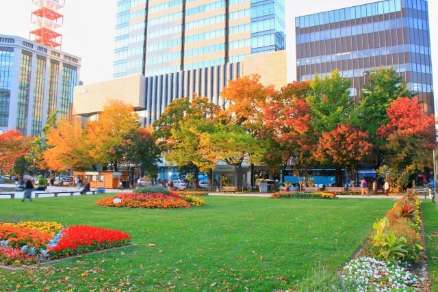 10. 說到札幌的紅葉的話就是此!「大通公園」