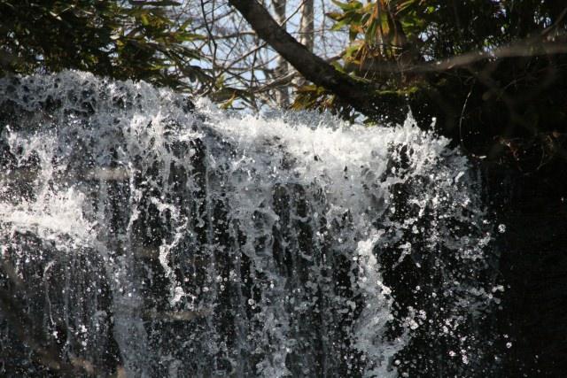 5. 只有此處才看得到的紅葉景色!「瀧野鈴蘭丘陵公園」